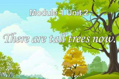 《There are tall trees now》PPT课件
