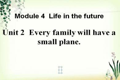 《Every family will have a small plane》Life in the future PPT课件2