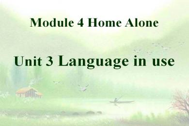 《Language in use》Home alone PPT课件