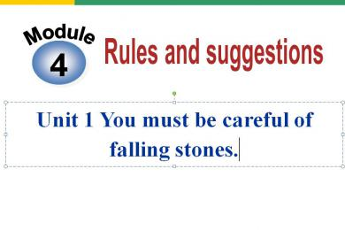 《You must be careful of falling stones》Rules and suggestions PPT课件2