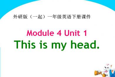 《This is my head》PPT课件2