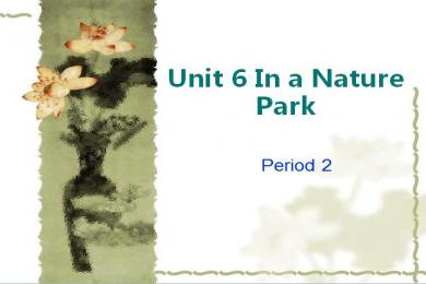 《In a nature park》PPT课件6