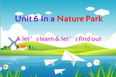 《In a nature park》PPT课件13